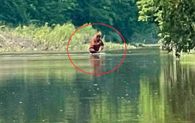 Шокированный каякер снял на видео, как похожее на йети существо бредёт по реке с ребёнком на руках