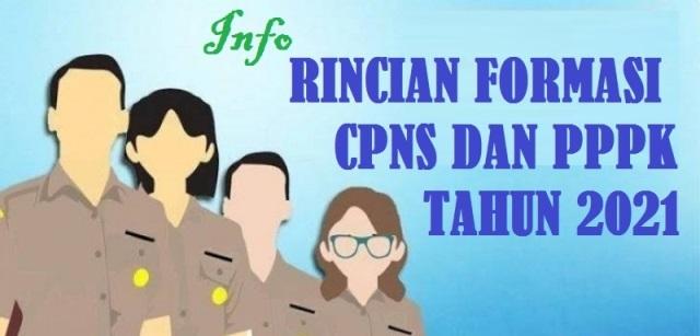 Rincian Formasi CPNS dan PPPK Pemerintah Kabupaten Balangan Provinsi Kalimatan Selatan Tahun 2021