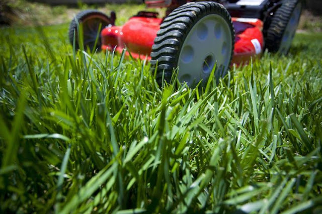 10 Simple and Practical Villa Garden Maintenance Hacks