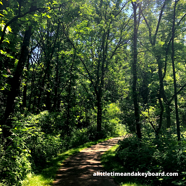 The emerald summer forest at Severson Dells beckoned us forward.