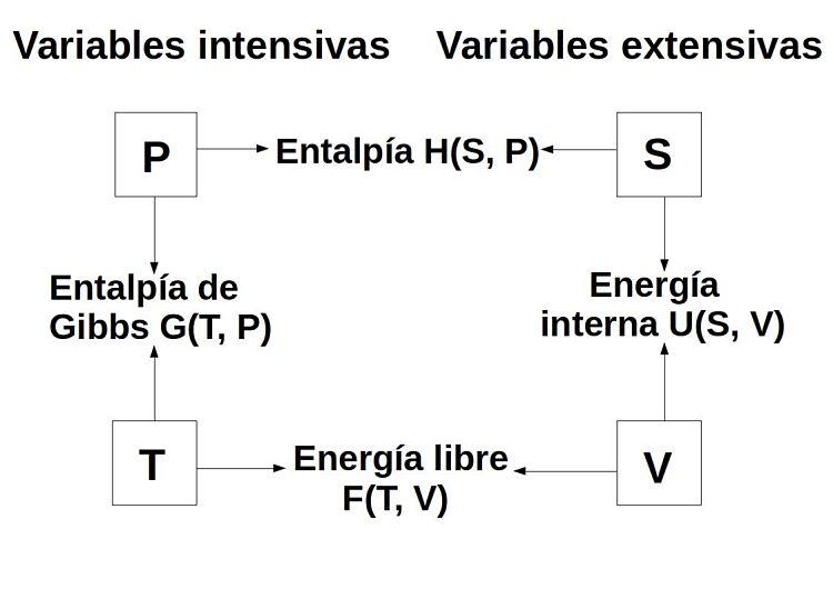 Esquema de combinacione sposibles de variables intensiva y extensivas para los potenciales termodinámicos