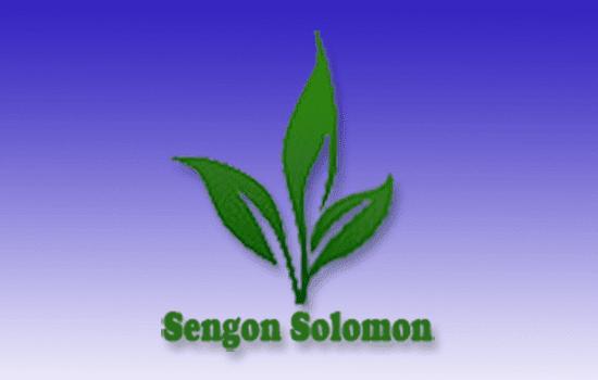 sengon-solomon