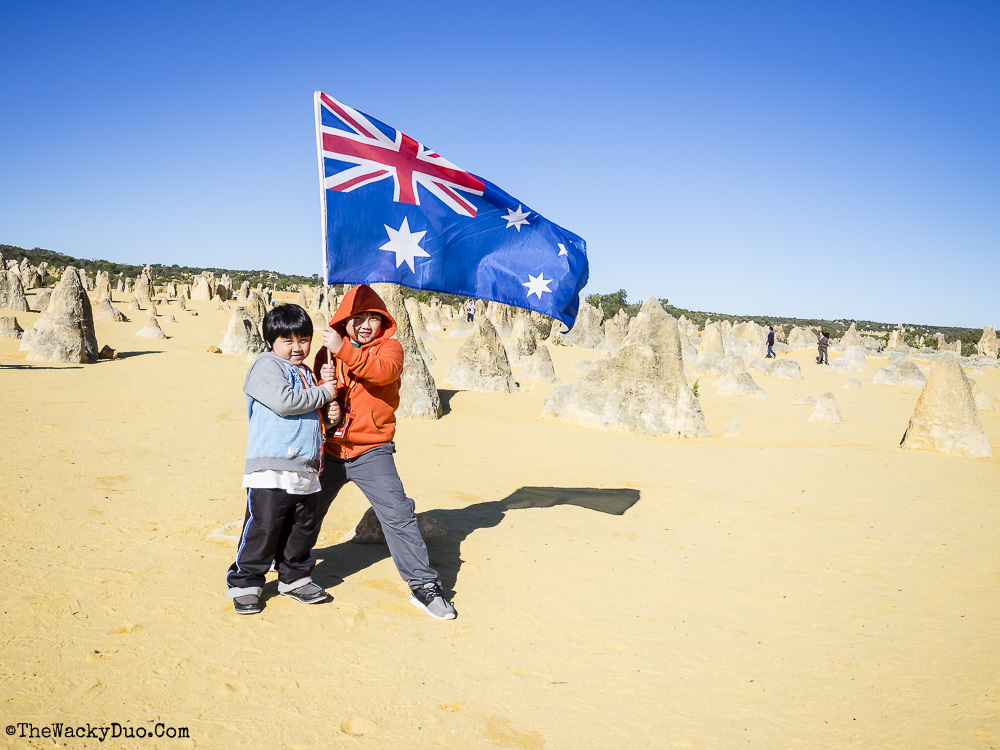 Pinnacles, Lancelin Dunes and Lobster Shack tour Review