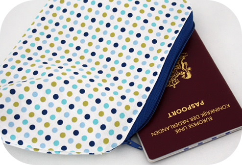 Travel document pouch