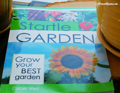 workbook-how-to-grow-your-own-garden-raised beds-giveaway-jemma