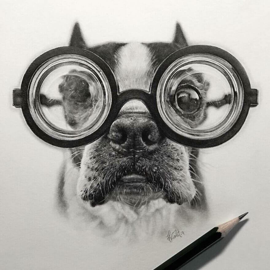 01-One-Eyed-Boston-Terrier-Helen-Violet-www-designstack-co