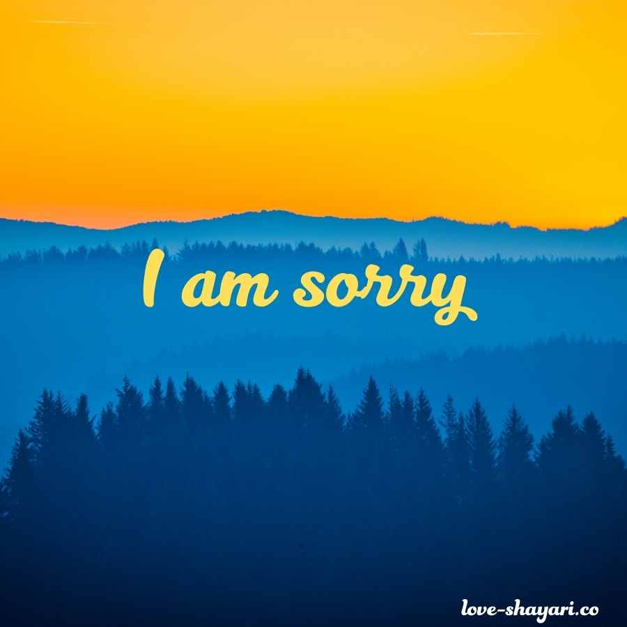 sorry images to lover