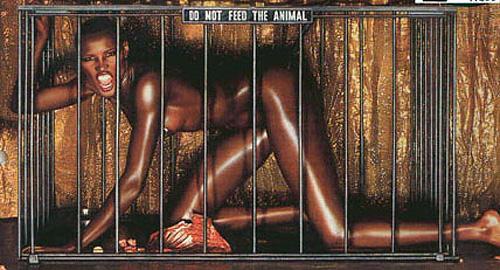 Mulheres negras bichano livre