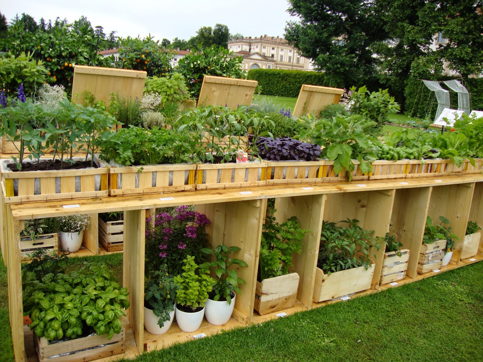 Un piccolo giardino in citt per la festa dei nonni for Allestire un giardino piccolo