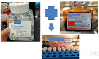Warna merah ditambahkan  phenol Red pada VTM