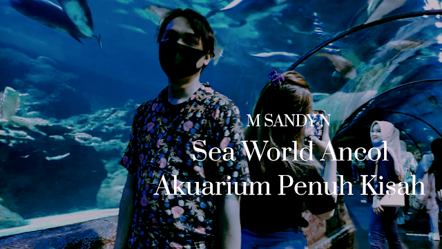 Sea World Ancol Akuarium Penuh Kisah