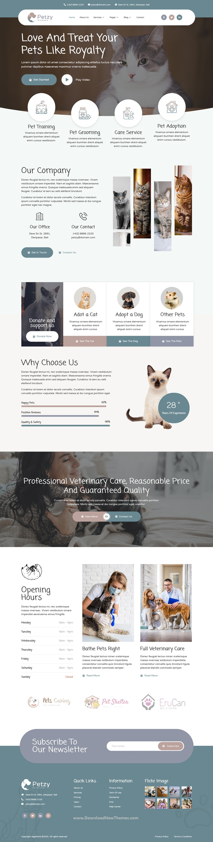 Pet Care and Veterinary Elementor Template Kit