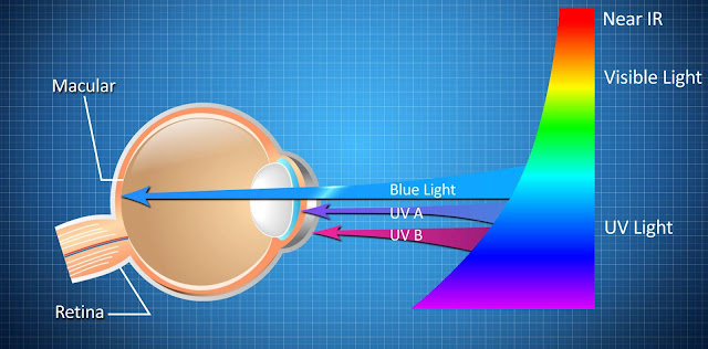 Effects of blue light on eye