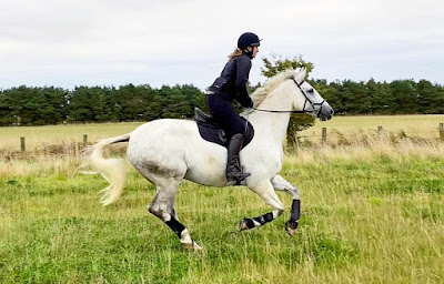 Benefits of hacking & hillwork - Team Tunnah Equestrian