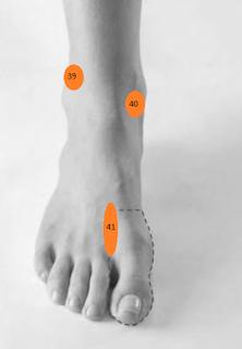 Titik refleksi radang ginjal dan tubuh bengkak