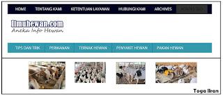 Modal untuk memajukan peternakan indonesia