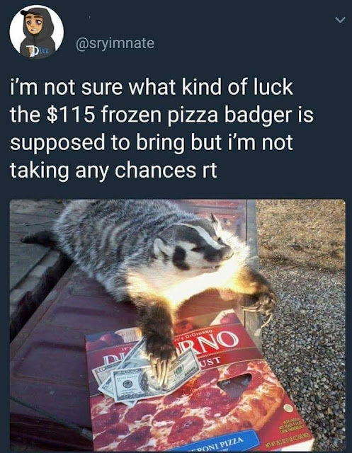 $115 frozen pizza badger - D i'm not sure what kind of luck the $115 frozen pizza badger is supposed to bring but i'm not taking any chances rt Podigion Dno Ust To Ur Roni Pizza E