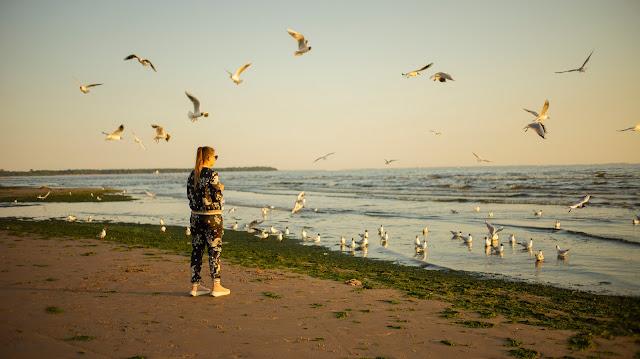 чайки птицы девушка море кормят лето южное настроение полёт
