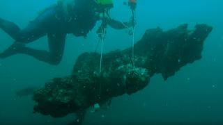 Arbres sous marins vieux de plus de  7000 ans !
