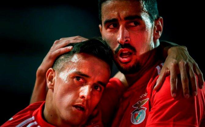 Benfica Cervi