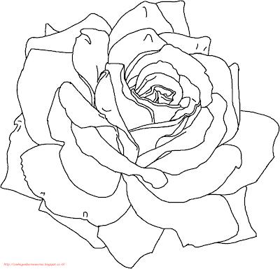 gambar bunga mawar - 3