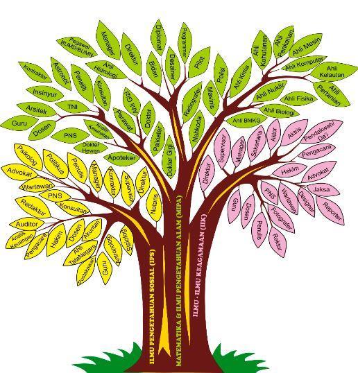 Gambar Pohon Karier Dan Pohon Jabatan