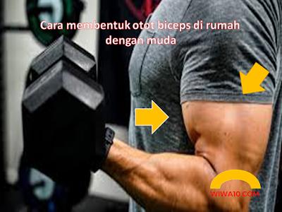 Cara Latihan Otot Biceps Di Rumah