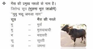 Lakshya Rajasthan GK Book PDF in Hindi Download