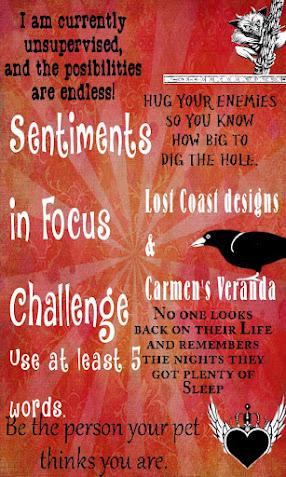 CHALLENGE #130 - SENTIMENTS IN FOCUS