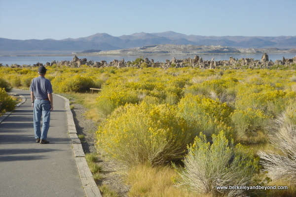 trail leading to Mono Lake in Lee Vining in Eastern California