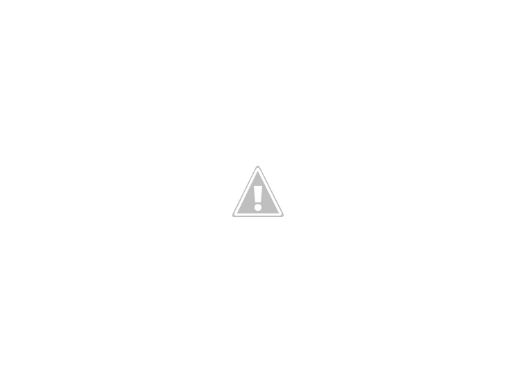 OFFBEAT RIPJAW WIRELESS MOUSE
