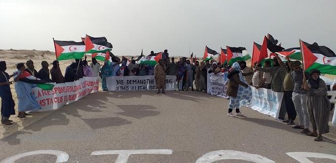 المتظاهرون الصحراويون في منطقة الگرگرات يؤكدون مجددا مواصلتهم الإعتصام إلى غاية إغلاق الثغرة غير القانونية.