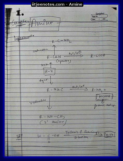 Amine Notes1