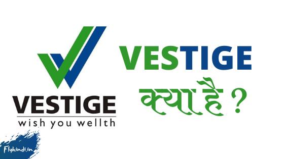 Vestige Kya Hai | Full Information in Hindi - Fly Hindi