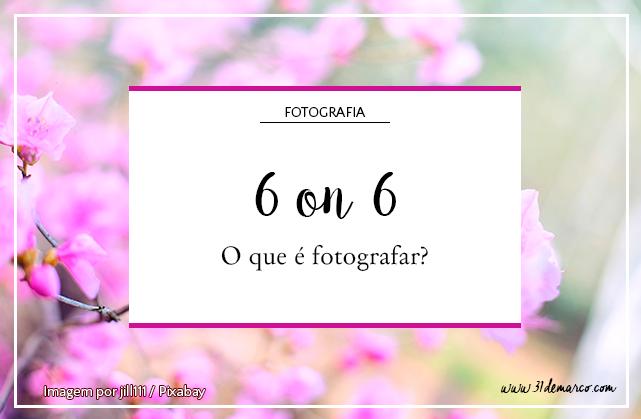 Imagem de uma cerejeira florida, com um quadrado gráfico ao centro com o título do post escrito