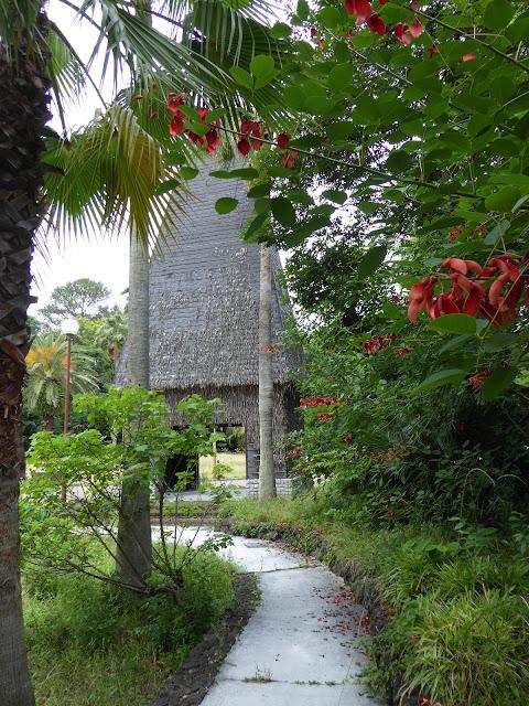 花博記念公園鶴見緑地 アメリカデイゴの花