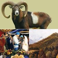 muflão chifrudo, casamento de ciganos, ciganos da Bulgária casando em uma tenda