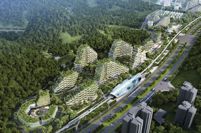 Visão aérea Cidade Floresta chinesa