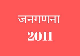 census 2011 questions in hindi