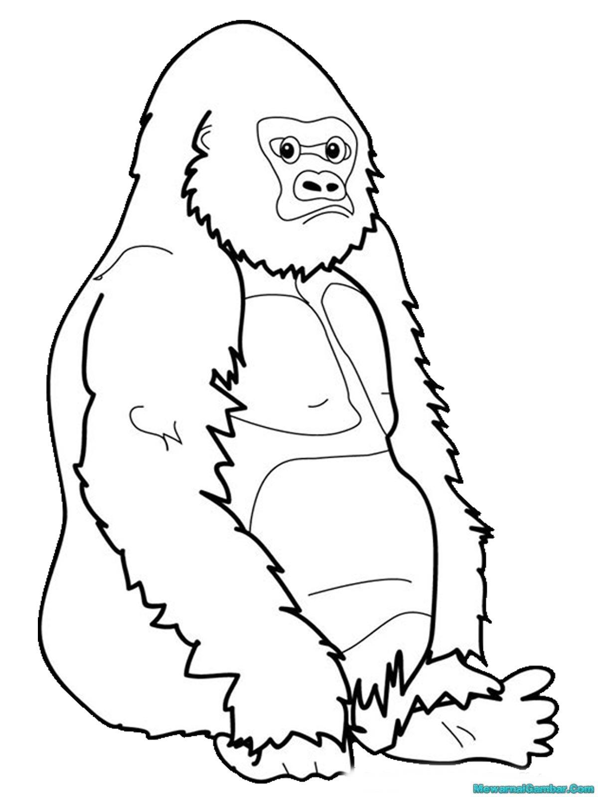 Mewarnai Gambar Gorila Di Hutan Belantara Mewarnai Gambar Raja Gorila Sedang Memperhatikan Anak Buahnya