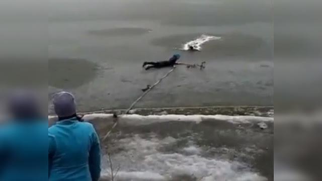 В Башкирии прохожий, рискуя жизнью, спас попавшую под лед собаку