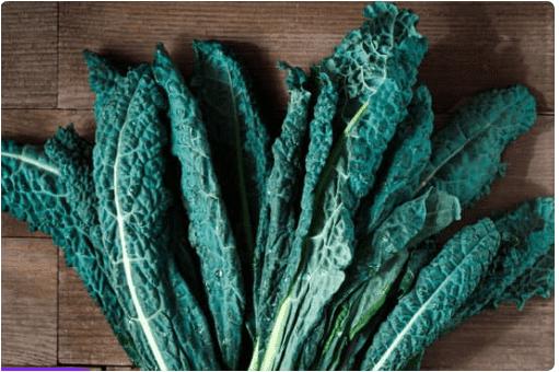 الخضراوات الورقية الخضراء كالي