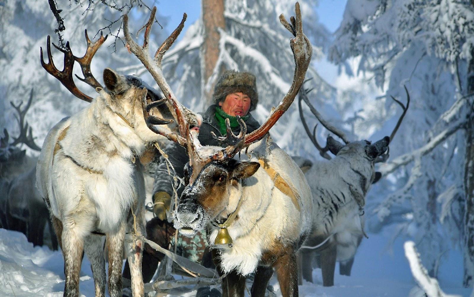 Yakutsk: life and life of Northern Nigeria