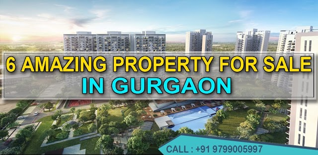 [PROPERTY FOR SALE] 6 Amazing Property For Sale In Gurgaon   Are you looking for properties?