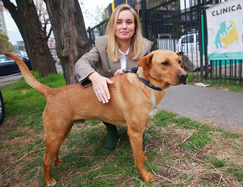 Kika Silva crea su propia fundación animalista