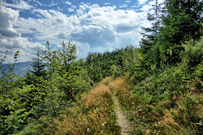 Hiking Loop around Złatna - Blue Route