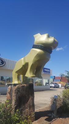 Northern Territory BIG Things | Berrimah BIG Bronze Bulldog