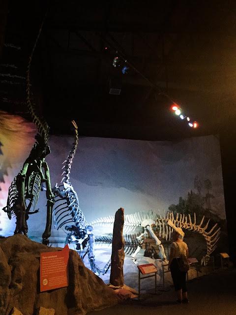 Museo Paleontologico Egidio Feruglio din Trelew, Argentina