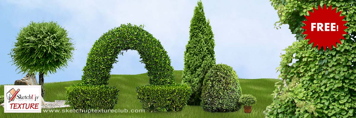 SKETCHUP TEXTURE: FREE CUT OUT SHRUBS & HEDGES PNG