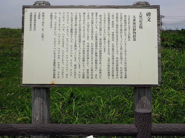 太東海浜植物群落 説明看板